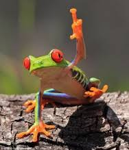 frogwithfinger